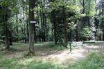 b_150_100_16777215_00_images_malopolskie7_dabry10.JPG