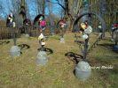 b_150_100_16777215_00_images_malopolskie_dabrowat248g.jpg